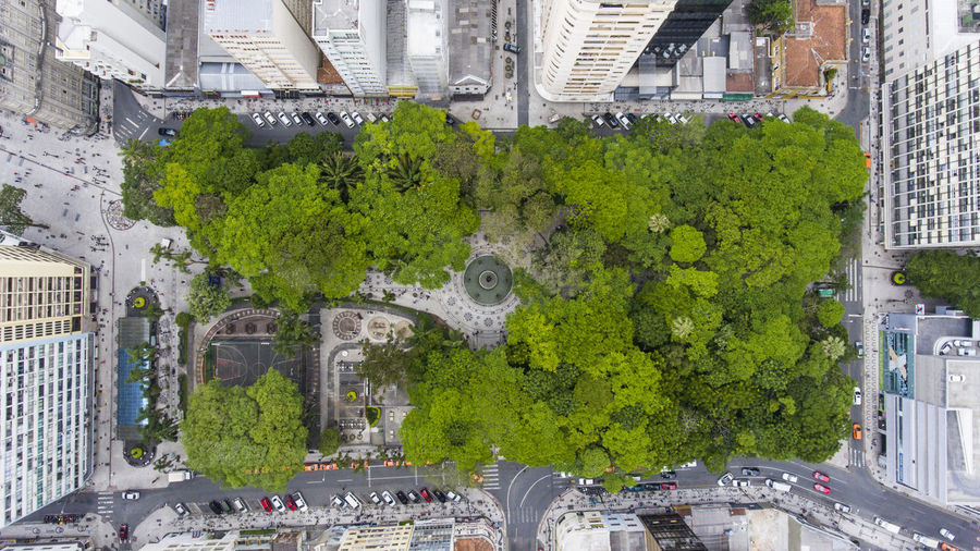 Aerial View Architecture Building Exterior Built Structure Car City City Life City Street Cityscape Crowd Day Green Color Growth High Angle View Large Group Of People Outdoors People Real People Road Street Transportation Tree #urbanana: The Urban Playground