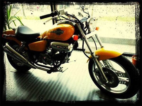 欲しい バイク