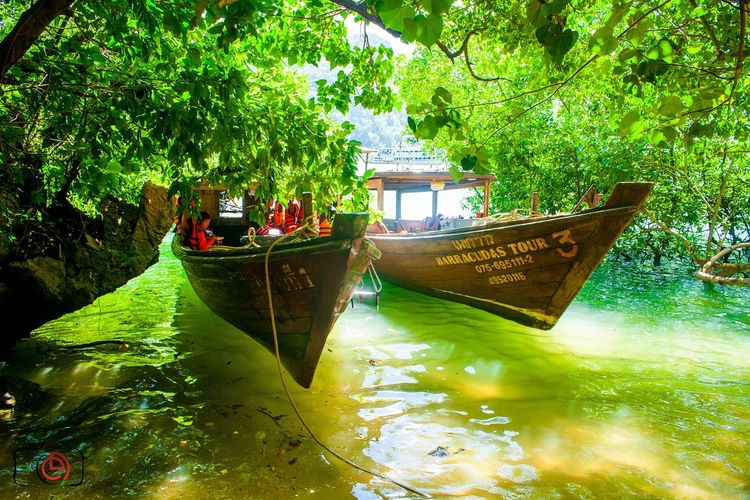 Long tail boat Thailand Life Is A Beach Green Boats Eye4photography  Taking Photos Hanging Out Photography Canon
