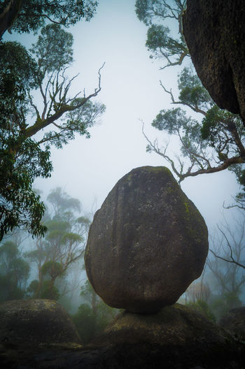 Balanced Rock Boulder - Rock Branch Day Foggy Morning Landscape Mountain Natural Parkland Nature No People Outdoors Sky Tree