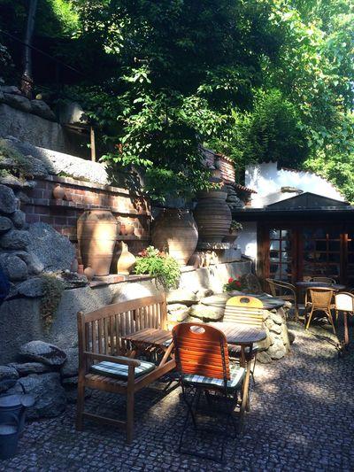 We found a café in a Beautiful Garden Hidden Gems  Lotti On Tour