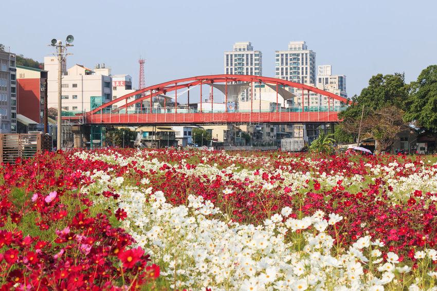 Art Center ASIA China Kaohsiung Pier 2 Pier Two Taiwan
