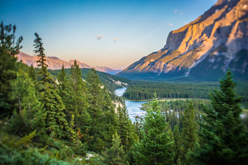 Banff  Banff National Park  EyeEm Best Shots EyeEmNewHere Beauty In Nature Coniferous Tree Environment Forest Growth Lake Land Landscape Mountain Mountain Range Nature No People Non-urban Scene Outdoors Plant Scenics - Nature Sky Tranquil Scene Tranquility Tree Water