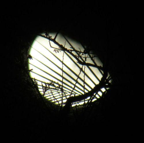 Moon Moonlight Moon_collection Moonphotography Lua  Luna Sky Skylovers Moonlover EyeEm Nature Lover Eyeemphotography Low Angle View EyeEmNewHere