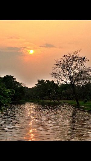 Sunset is the best thing at the end of the day Phutthamonthon Relaxing Sunset #sun #clouds #skylovers #sky #nature #beautifulinnature #naturalbeauty #photography #landscape