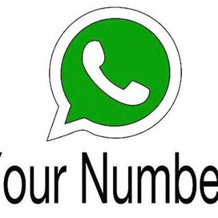 Plz give me ur number of whatsapp..........