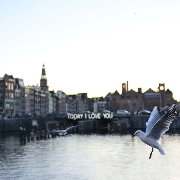 Amsterdam Love Animal Themes Animal Wildlife Animals In The Wild Architecture Bird Building Exterior Built Structure City Day Flying I Love You Love ♥ Lovelovelove Lovely Nature No People One Animal Outdoors Sea Seagull Sky Spread Wings Water