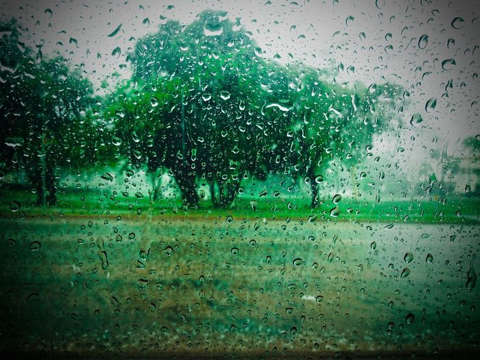 Northern Territory Wet Season Monsoon Australia Green Raindrops Raindrops On My Window Trees EyeEmNewHere