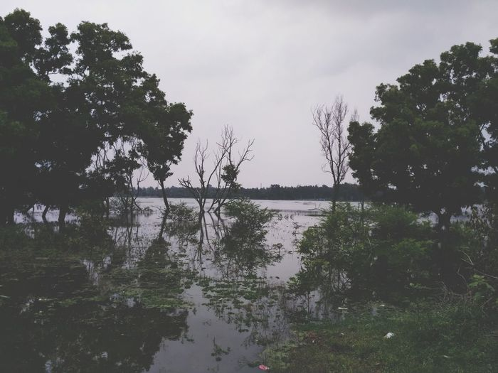 Water Lake Tree Flood Landscape Sky First Eyeem Photo