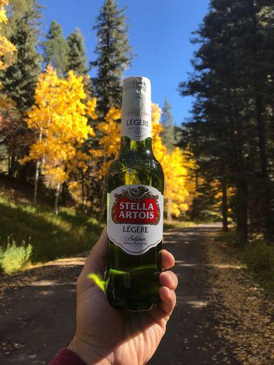 Stellaartois Beer Colorado Fall