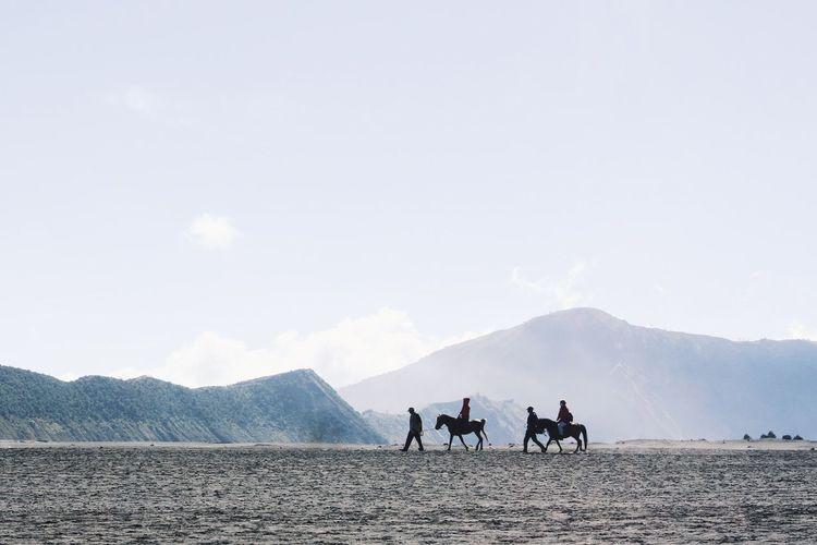 The KIOMI Collection Taking Photos Traveling Hello World bromo, indonesia.