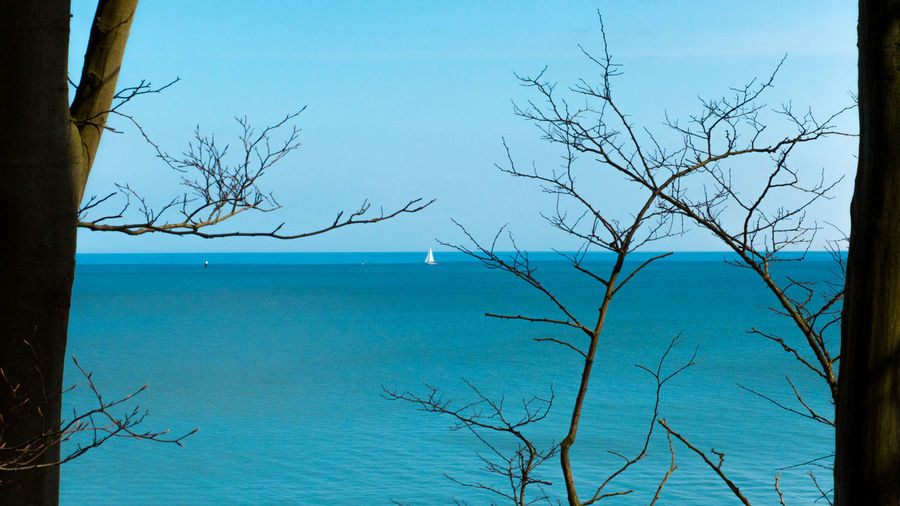 Brodtener Ufer Coastline Tree Trees Bare Tree Beauty In Nature Blue Branch Cliff Day Go-west-photography.com Horizon Horizon Over Water Idyllic Nature No People Non-urban Scene Outdoors Plant Sailboat Scenics - Nature Sea Sky Tranquil Scene Tranquility Tree Water