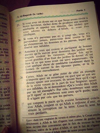 Sourat 2 Al-baqarah verset 25 Coran Lecture