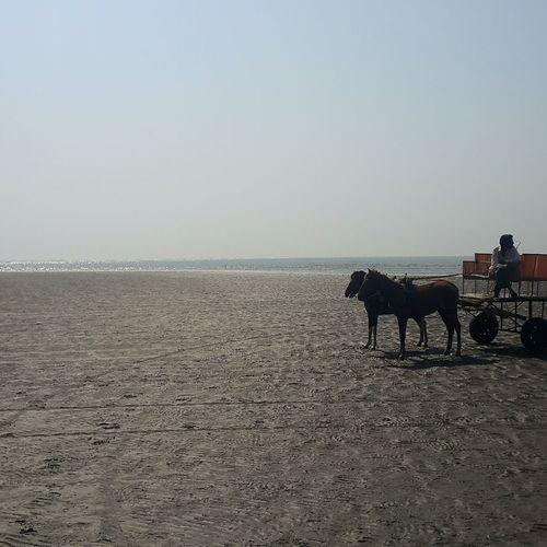 Long Goodbye Travel Landsape Beach EyeEm Diversity