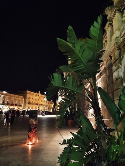 Getting Inspired Night Ortigia Enjoying The View EyeEm Best Shots Sicily Great Atmosphere Historical Building Summer The Places I've Been Today Ortigia By Night Duomo - Ortigia