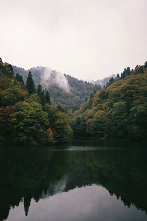 Photography Photo Film Film Photography Filmisnotdead 35mm Film Landscape Forest Woods Outdoors Mountain Mountains Water Reflections Reflection Valley Nature Nature Photography EyeEm Nature Lover View EyeEm Best Edits EyeEm Best Shots EyeEmBestPics Photooftheday Japan