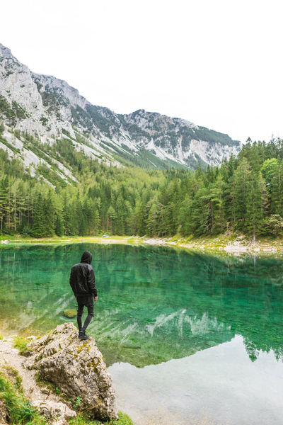 Adventure Beauty In Nature Day Forest Full Length Hiking Lake Landscape Mountain Mountain Range Nature One Man Only One Person Outdoors Pine Tree Rear View Scenics Standing Tranquil Scene Tranquility Travel Travel Destinations Tree Vacations Water