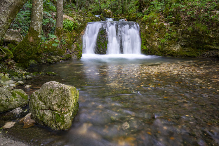 Bigar Waterfall EyeEmNewHere Romania Beauty In Nature Bigar Bigar Falls Blurred Motion Flowing Flowing Water Forest Land Long Exposure Moss Motion Nature No People Outdoors Plant Rainforest River Scenics - Nature Tree Water Waterfall Waterfalls