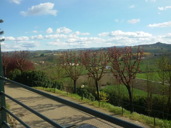 Nuvole Piemonte Prato Sky And Clouds Trees Beauty In Nature Cielo Day Landscape Marzo Mountain Nature No People Ombra Outdoors Primavera Scenics Sky Spring Springtime Tree Trees And Nature Trees And Sky Verde Vino