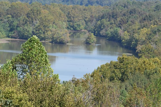 Alabama River ... Alabama River Beauty In Nature Landscape River Water River View Montgomery, Al. Alabama Outdoors Hiking Adventures Hiking❤ Riding My Motorcycle