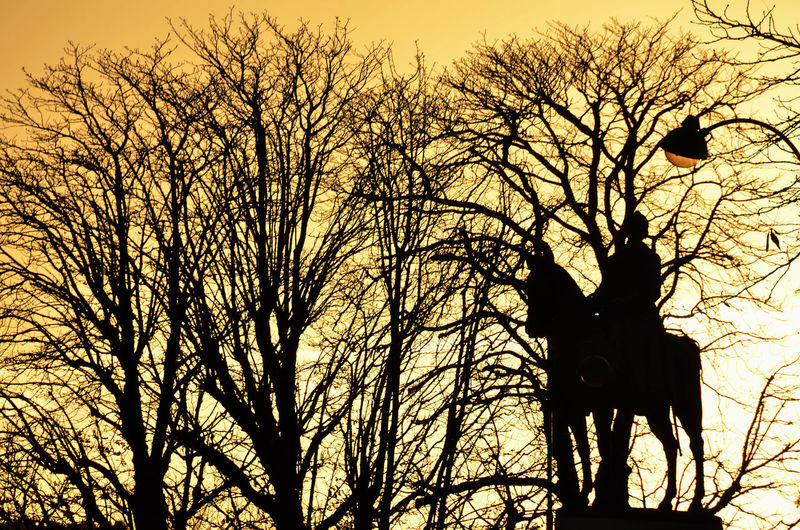 Bare Tree Branch Coucher De Soleil Outdoors Paris, France  Silhouette Sky Statue Statue équestre Sunset Sunset Silhouettes Tree