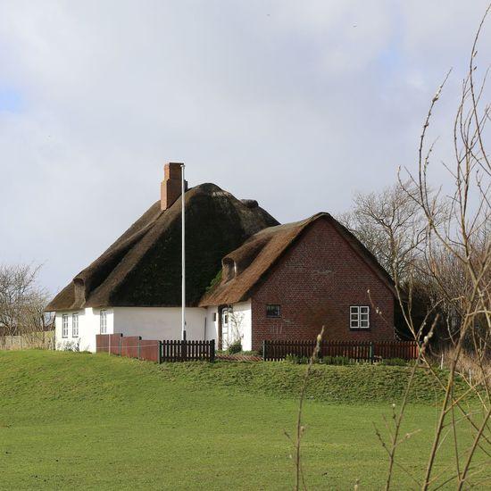 Barn on field by houses against sky