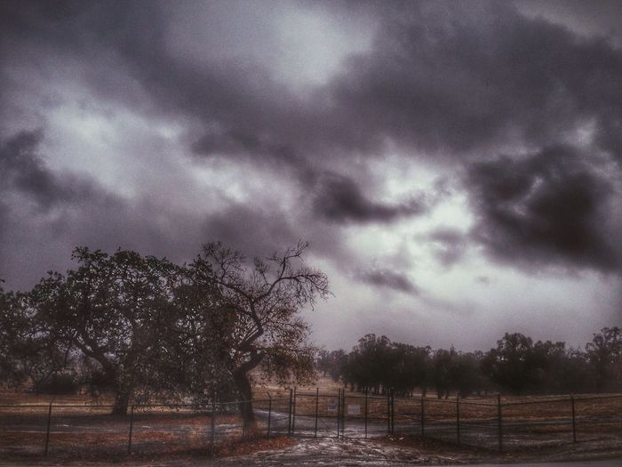 The view from my window VSCO California Vscocam EyeEmbestshots