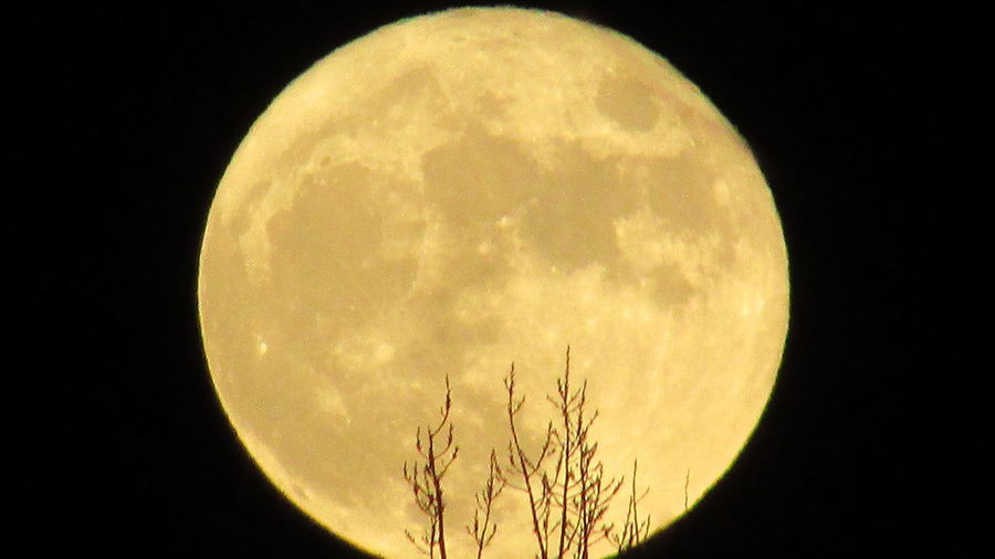 Full Yellow Moon 2am & Sleepless Cadillac Michigan Moon_lovers