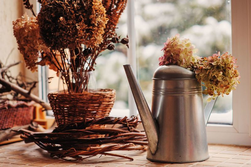 autumn cozy home still life with window, dried hydrangea flowers in watering can Autumn Calm Home Hydrangea Rustic Simple Things In Life Close-up Cozy Day Decoration Dried Dried Plant Fall Flower Food Fragility Freshness Indoors  Interior Nature No People Table Vase Window