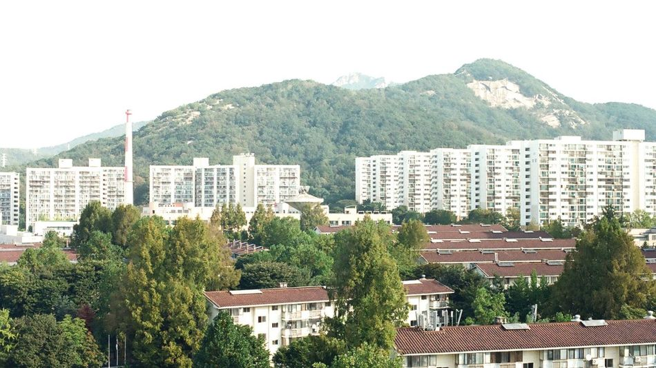 EyeEmNewHere Korea Seoul Mountain Nature Day NikonFM2 35mmfilmphotography 35mm Daily Life Snap City Sunny Day Apartment Building