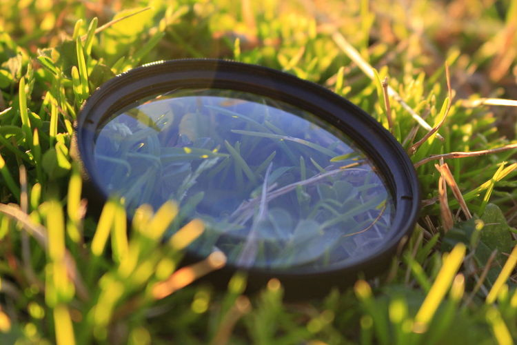 Close-up of reflection on field