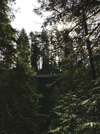 Vancouver.
