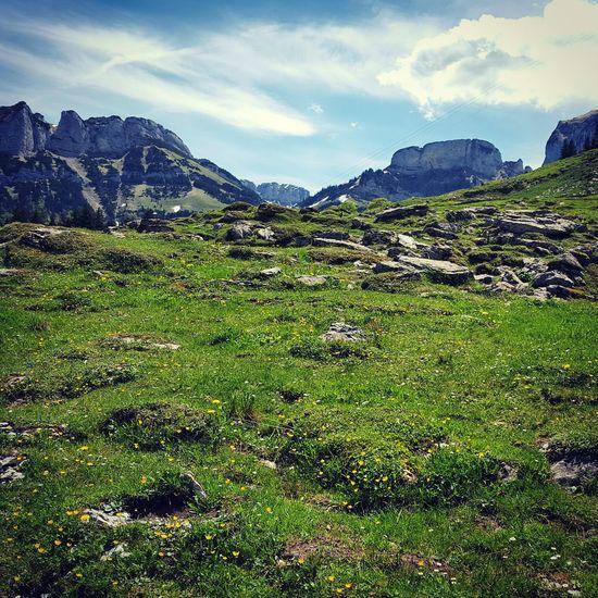Äscher Alpstein Alpstein Alpes Mountain_collection Mountains Swiss Alps Swiss Switzerland Heidiland Heidiinheaven