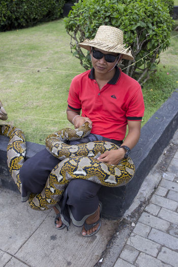 Adult Bali Bali, Indonesia Day Giant One Person People Portrait Snake