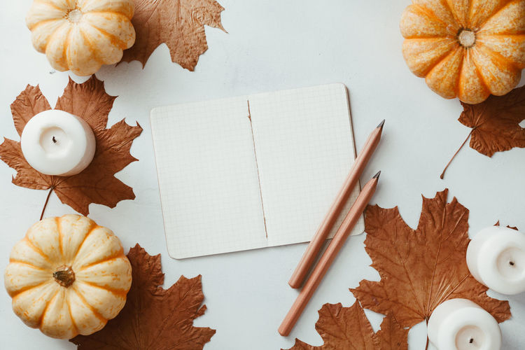 Autumn flat lay with small pumpkins, fall maple leaves and blank paper notebook on a white background. The concept of september and school. Autumn Top View Flat Lay September October November Maple Note Notebook Empty Blank White Above School Pumpkin Candle Concept Cozy Winter Mockup Fall Back Background Education Mock Desk Table Design Pencil Template Colorful Copy Space Still Life
