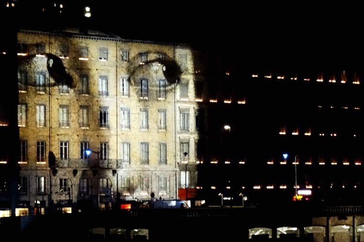 Soirée hommage aux victimes des attentats de Paris - Lyon le 8 Décembre 2015 - Lyon - Fleurs