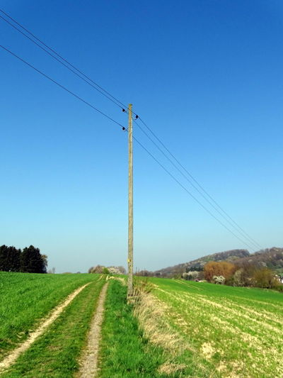 Blue Cable Clear Sky Connection Day Electricity  Electricity Pylon Field Grass Landscape Nature No People Outdoors Power Line  Power Supply Scenics Sky Telephone Line Telephone Pole Tranquil Scene Tranquility Tree