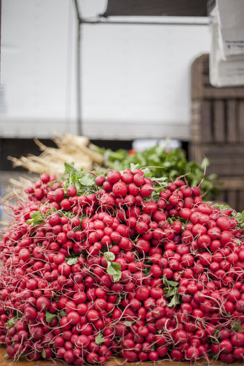 Heap Of Radishes For Sale In Market