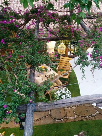 Garden Boutique in Positano The Essence Of Summer <3 Italia Amalfi Coast Holiday Beautiful Day Flowers