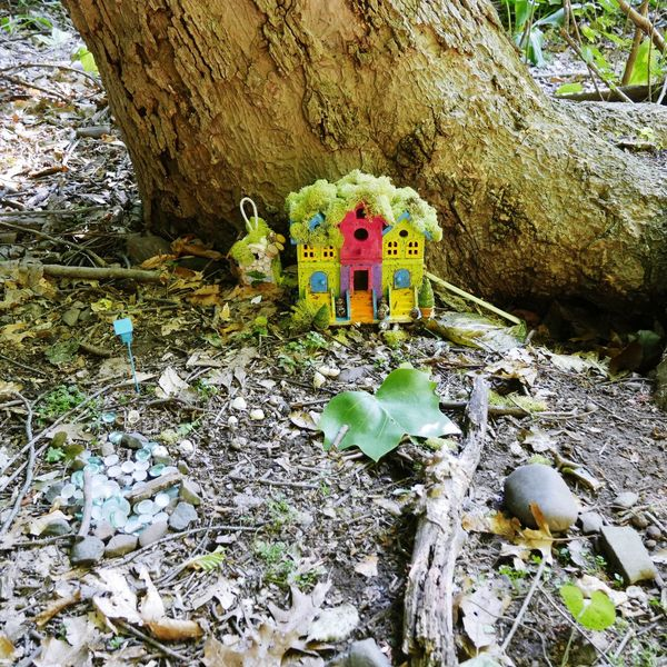 Fairy House in the woods near my house. Woods Forest Trees Little Things Nature_collection Nature Photography