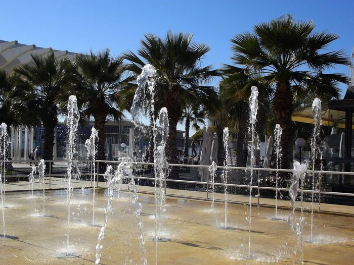 Málaga,España Malaga Puerto Málaga Water Palm Tree Tree Fountain Swimming Pool Reflection Day No People Motion Outdoors Clear Sky Hot Spring