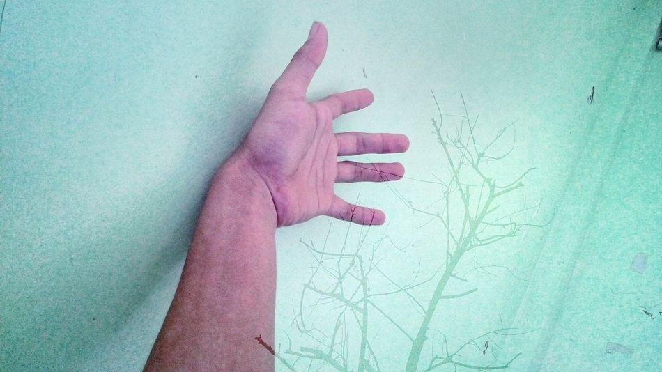Human Hand Human Finger Human Body Part People Palm EyeEm Masterclass Overlay Editing Overlays_everywhere