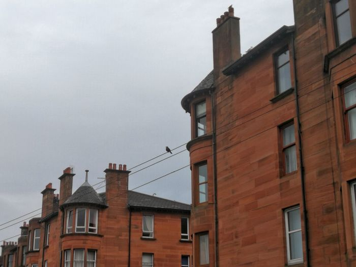 Architecture Building Exterior City No People Low Streets Of Glasgow P10 Plus Photography Tenement Building Bird On A Wire Scottish Summer Grey Sky