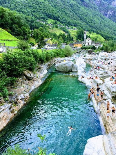 Water Tree High Angle View Nature Rock - Object Day River Outdoors No People Beauty In Nature Animal Themes Sky Jenae Switzerland Forest Motion Greenhills Alps Alps Switzerland Mountain Heaven Beauty In Nature Swim Summer