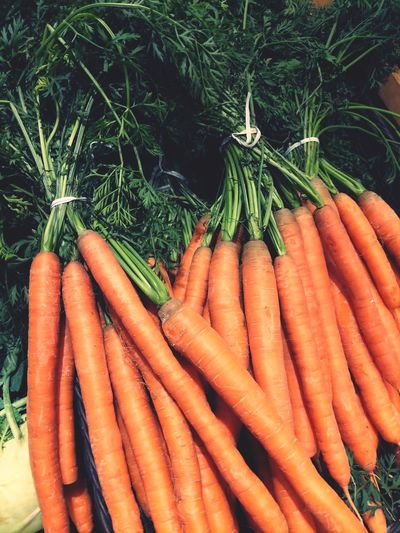 Carrot Vegetable Bunch Variation Root Vegetable Orange Color Carrot Organic Food And Drink Close-up Farmer Market Root Raw Food