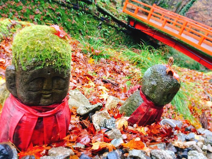 Leaf Outdoors Day No People Nature Statue Close-up Japan Photos Japan Kyoto Japanese  京都 地蔵 Jizo 秋 紅葉 EyeEm Japan Autumn