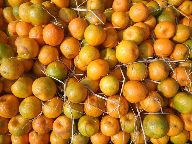 Citrus Fruit Close-up Day Food Food And Drink Freshness Fruit Full Frame Healthy Eating Lemon Nature No People Orange Fruit