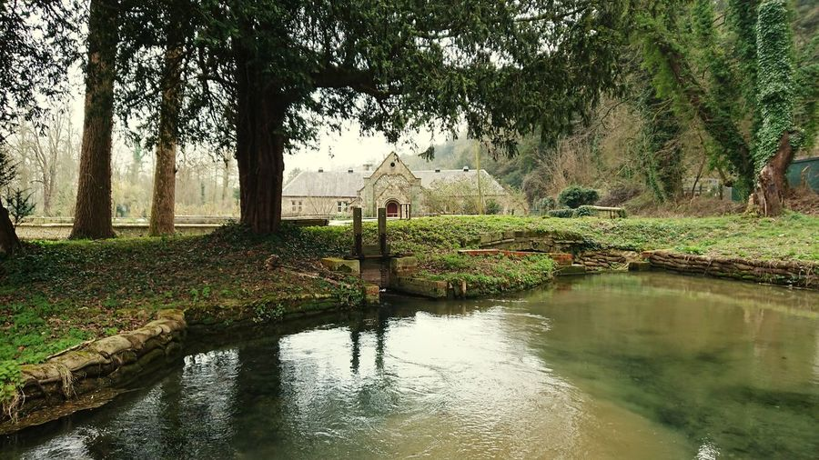 English Countryside Tradition Country House Walks Beauty In Nature Landscape Tree Water Reflection Sky Grass Calm