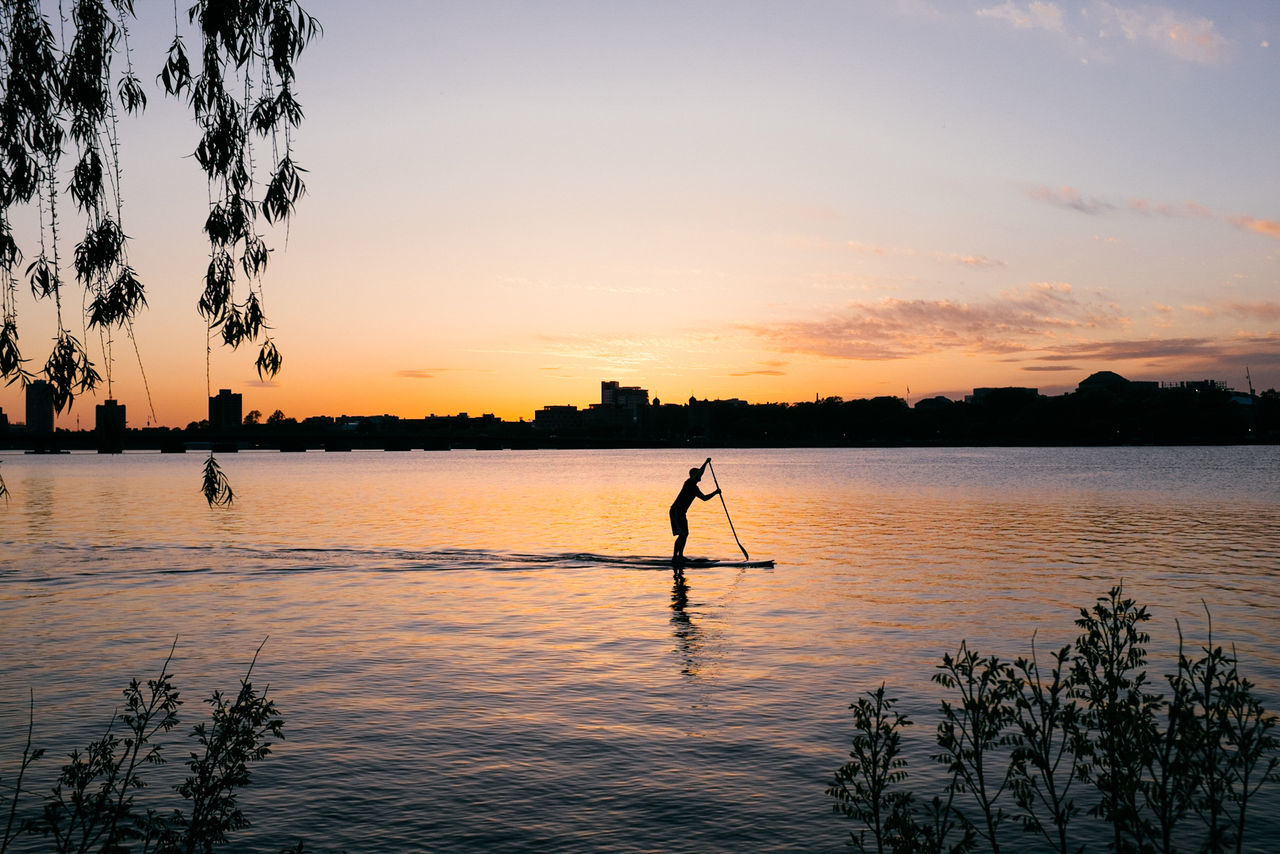 Silhouette of person rowing boat