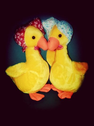 Duck Doll Cute Hello World Loveit